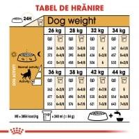 Royal Canin German Shepherd Adult, hrană uscată câini, Ciobănesc German, 3kg