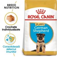 Royal Canin German Shepherd Puppy, pachet economic hrană uscată câini junior, Ciobănesc German
