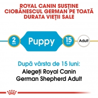 Royal Canin German Shepherd Puppy, pachet economic hrană uscată câini juniori, 12kg x 2
