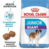 Royal Canin Giant Junior, pachet economic hrană uscată câini junior, etapa 2 de creștere, 15kg x 2