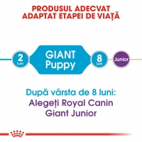 Royal Canin Giant Puppy, pachet economic hrană uscată câini junior, 15kg x 2