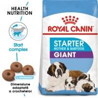 Royal Canin Giant Starter Mother & BabyDog, mama și puiul, pachet economic hrană uscată câini, 15kg x 2