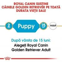 Royal Canin Golden Retriever Puppy, hrană uscată câini junior, 1kg