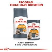 Royal Canin Hair & Skin Care Adult, pachet economic hrană uscată pisici, piele și blană, 10kg x 2