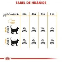 Royal Canin Hair & Skin Care Adult, hrană uscată pisici, piele și blană, 10kg