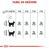 Royal Canin Hairball Care Adult, pachet economic hrană uscată pisici, limitarea ghemurilor de blană, 2kg x 2