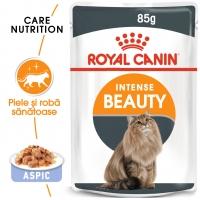 Royal Canin Intense Beauty Care Adult, bax hrană umedă pisici, piele și blană, (în aspic), 85g x 12