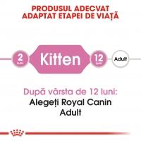 Royal Canin Kitten, hrană uscată pisici junior, 400g