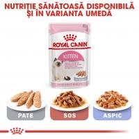 Royal Canin Kitten, hrană uscată pisici junior, 2kg