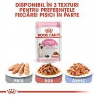 Royal Canin Kitten, plic hrană umedă pisici, (în sos), 85g
