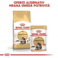 Royal Canin Maine Coon Adult, hrană uscată pisici, 4kg