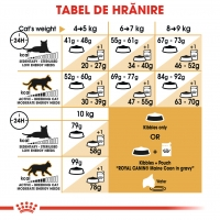 Royal Canin Maine Coon Adult, pachet economic hrană uscată pisici, 4kg x 2