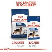 Royal Canin Maxi Adult, bax hrană umedă câini, (în sos), 140g x 10