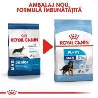 Royal Canin Maxi Puppy, hrană uscată câini junior, 15kg