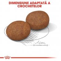 Royal Canin Medium Adult 7+, pachet economic hrană uscată câini, 15kg x 2