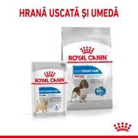 Royal Canin Medium Light Weight Care Adult, hrană uscată câini, managementul greutății, 10kg