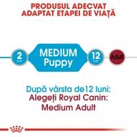 Royal Canin Medium Puppy, plic hrană umedă câini junior, (în sos), 140g