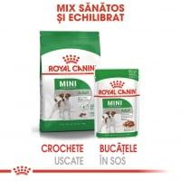 Royal Canin Mini Adult, bax hrană umedă câini, (în sos), 85g x 12
