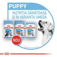 Royal Canin Mini Puppy, plic hrană umedă câini junior (în sos), 85g