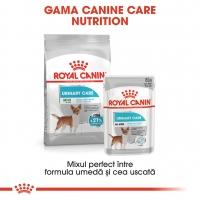Royal Canin Mini Urinary Care, hrană uscată câini, sănătatea tractului urinar, 1kg