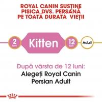 Royal Canin Persian Kitten, pachet economic hrană uscată pisici junior, 10kg x 2