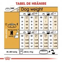 Royal Canin Poodle Adult, hrană uscată câini, 1.5kg