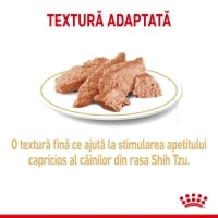 Royal Canin Shih Tzu Adult, bax hrană umedă câini (pate), 85g x 12