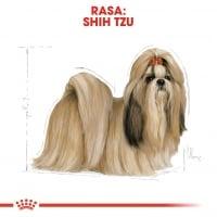 Royal Canin Shih Tzu Adult, hrană uscată câini, 500g