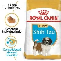 Royal Canin Shih Tzu Puppy, hrană uscată câini junior, 500g