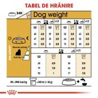 Royal Canin Yorkshire Adult, hrană uscată câini, 500g