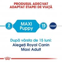 Royal Canin Maxi Puppy, 10 kg
