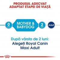 Royal Canin Maxi Starter, 15 kg
