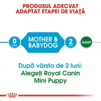 Royal Canin Mini Starter, 8.5 kg