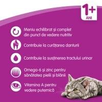 WHISKAS Adult, Vită, hrană uscată pisici, 14kg
