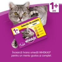 WHISKAS Adult, Vită, pachet economic hrană uscată pisici, 14kg x 2