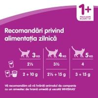 WHISKAS Casserole, Vită, bax hrană umedă pisici, (în aspic), 85g x 30