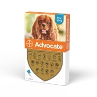 Advocate Caine, 4-10 kg, 3 pipete