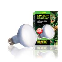 Bec Daylight Basking Spot - PT 2132 150 W (PT2140)