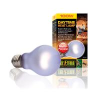 Bec Daytime Heat Lamp A19 - PT2110 60 W