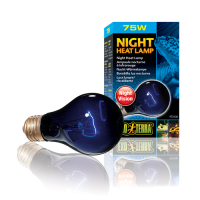 Bec Night Heat Lamp A19 - PT2126 50 W