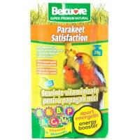 Belcuore Vitamine Energie pentru Papagali Mici 20g