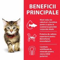 Hill's SP Feline Adult Conserva Pui, 82 g