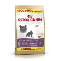 Royal Canin British Shorthair, 400 g + 400 g Gratis