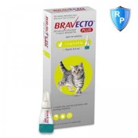 Bravecto Plus Spot On Cat 1.2-2.8 kg, 112.5 mg, 1 pipeta