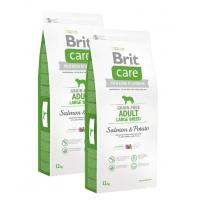 Pachet 2 x Brit Care Grain-Free Adult Large Breed Somon si Cartofi, 12kg