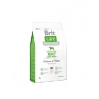 Brit Care Grain0Free Adult Large Breed Somon si Cartofi, 3 kg