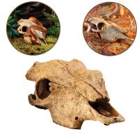 Decor Buffalo Skull