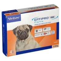 Effipro Duo Caine S, 2-10 kg, 4 pipete