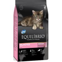 Equilibrio Kittens, 7.5 kg