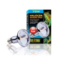 Bec Halogen Sun Glo 75 W